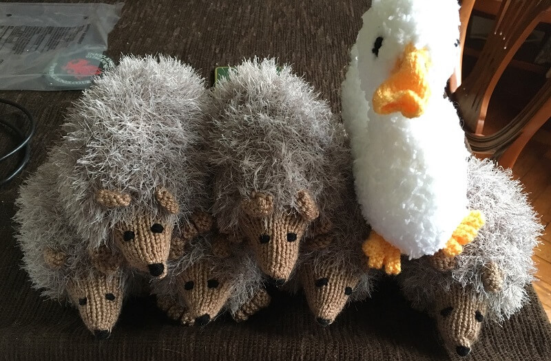 knitted hedgehogs made by Jude Hanlon for sale at fairs to generate income for the charity Porridge and Rice