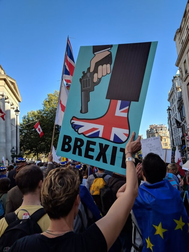 britain shooting itself in the foot, a sign at the People's Vote March