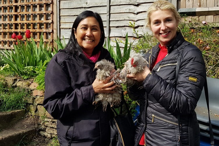 Ladies at the Porridge and Rice petting day hold frizzle Bantam Peking Chickens
